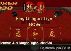 Cara Bermain Judi Dragon Tiger Joker338