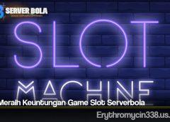 Cara Meraih Keuntungan Game Slot Serverbola