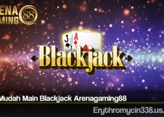 Cara Mudah Main Blackjack Arenagaming88